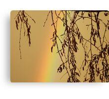Muggy Rainbow Sky Canvas Print