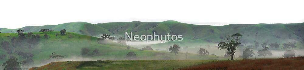 Pyalong Valley proper by Neophytos