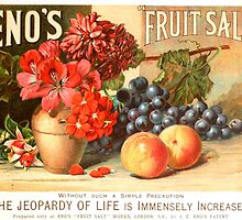 Botanical Fruit by Vintagee