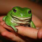 frog  :) by SusanC
