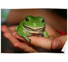 frog  :) Poster