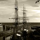 Tall ships  by spottydog06