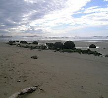 Long view at Moeraki by Fran  Gardner