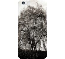 Willow Tree  iPhone Case/Skin