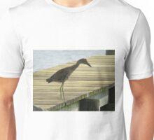 Yellow Crowned Night Heron - Juvenile   (1407111638VA) Unisex T-Shirt