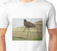Yellow Crowned Night Heron - Juvenile  (1407111652VA) Unisex T-Shirt