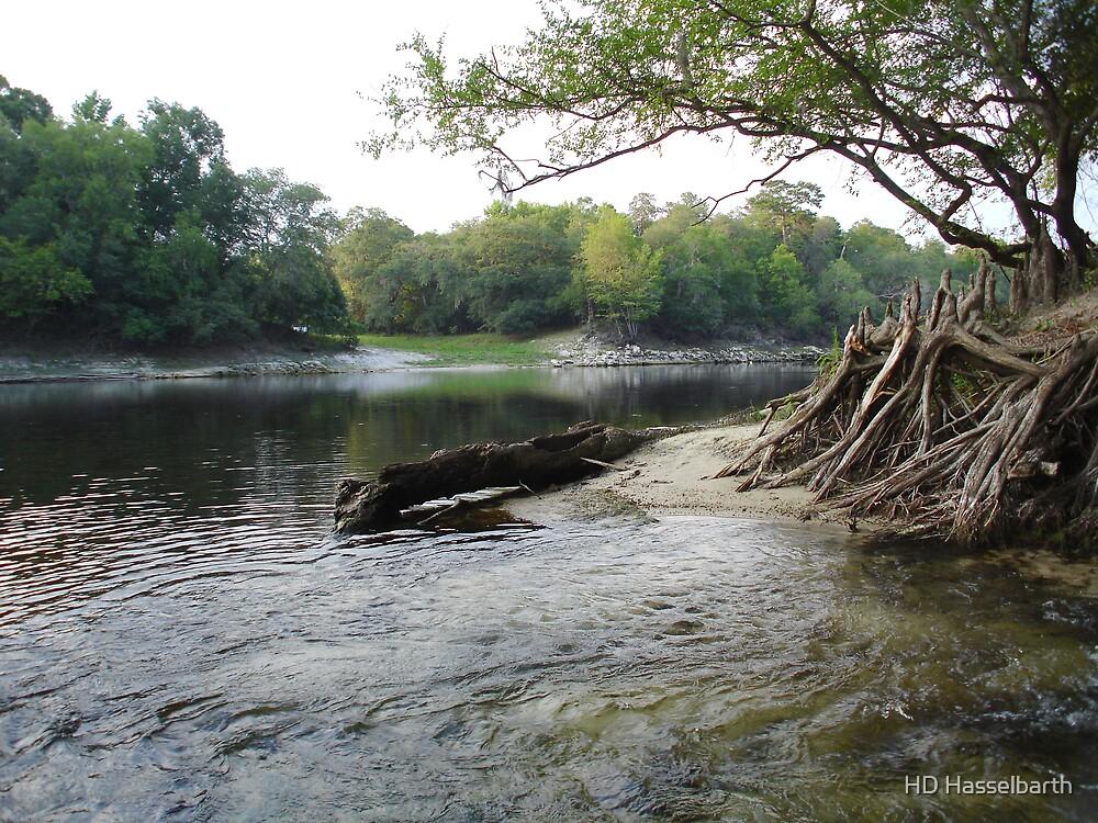 Suwanee River by probono