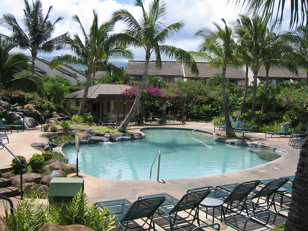 An exotic swimming pool in Maui in Hawaii by dolphin