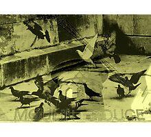 Medley Photographic Print