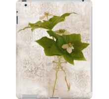 Still Life Of Dogwood - Bunch Berry Blossoms  iPad Case/Skin