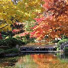 Fall Serenity by Vivian Sturdivant