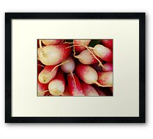 Radishes............................Plus Sinus Recipe Framed Print