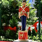 The Nutcracker Soldier by Maggie Hegarty