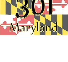 301 MARYLAND  by VividAudacity
