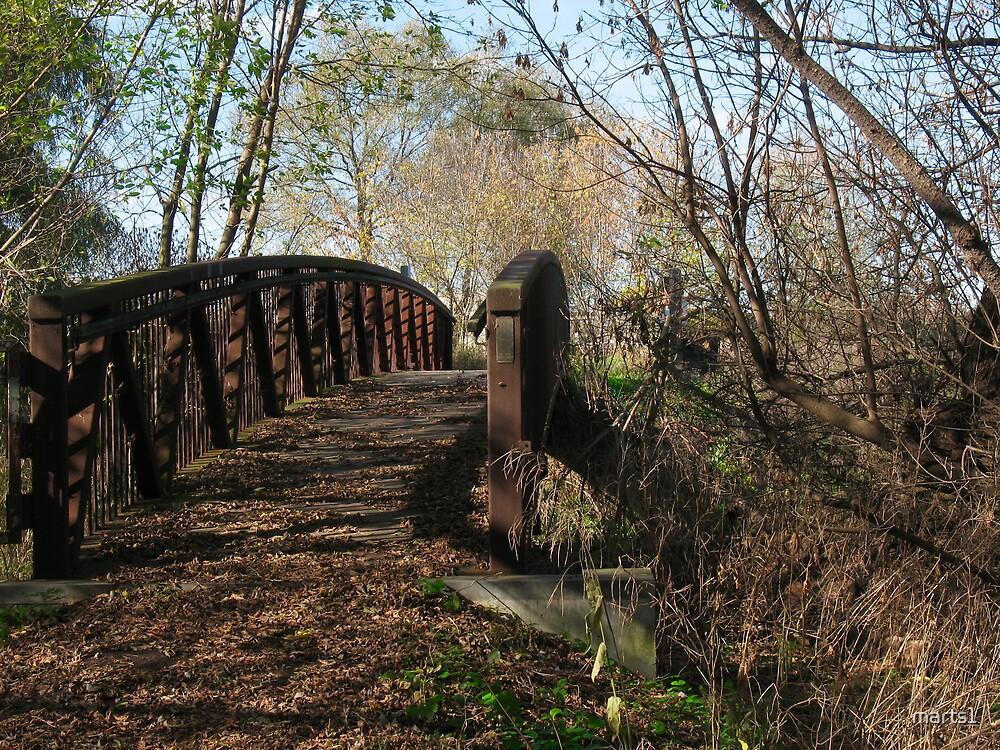 Oshawa Trails by marts1