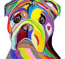 BULLDOG Photographic Print