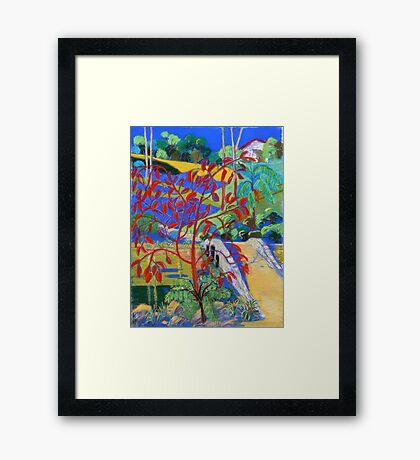 Stone Bridge #3 Tamborine Botanical Gardens Framed Print