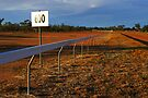 Lightning Ridge Racecourse by Darren Stones