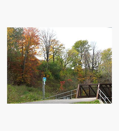 Oshawa Trails Photographic Print