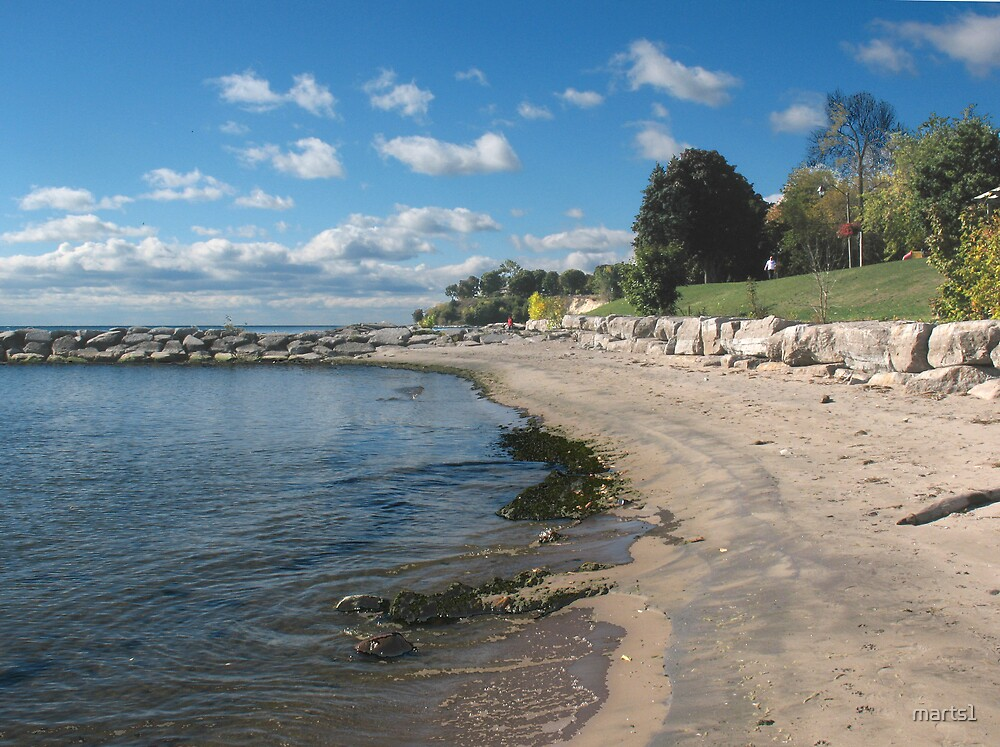Oshawa on the Beach  by marts1