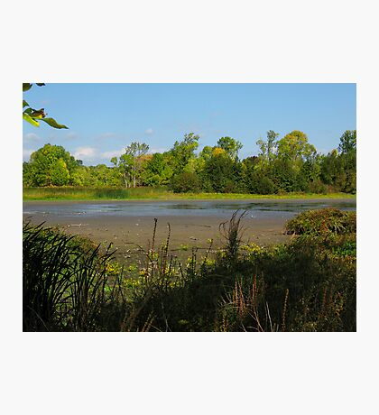 Oshawa Marsh Photographic Print