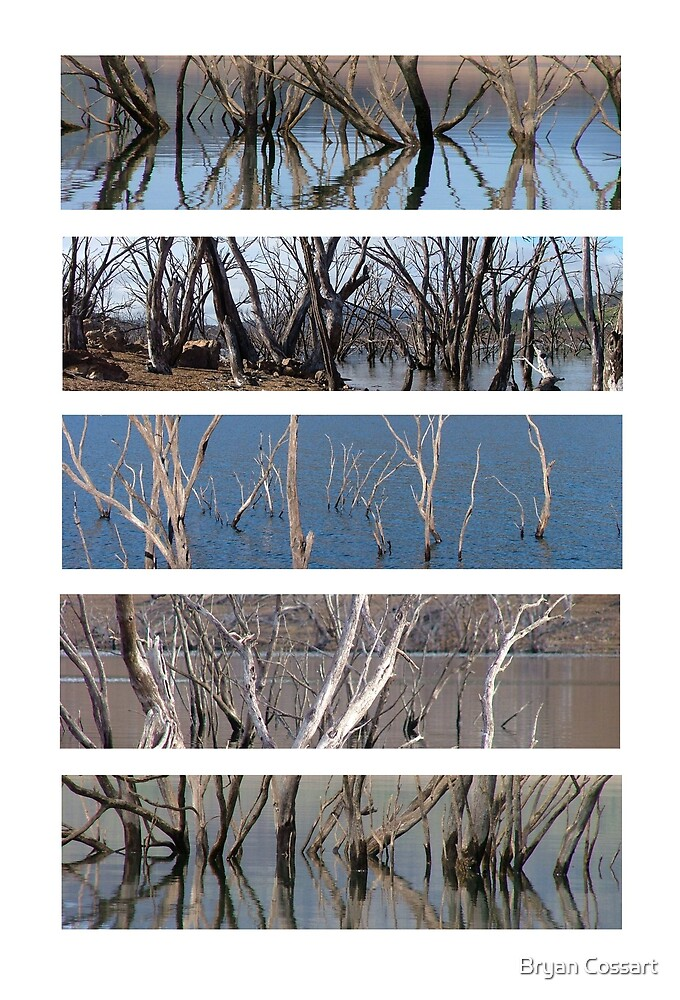 Eucumbene montage 5 by Bryan Cossart