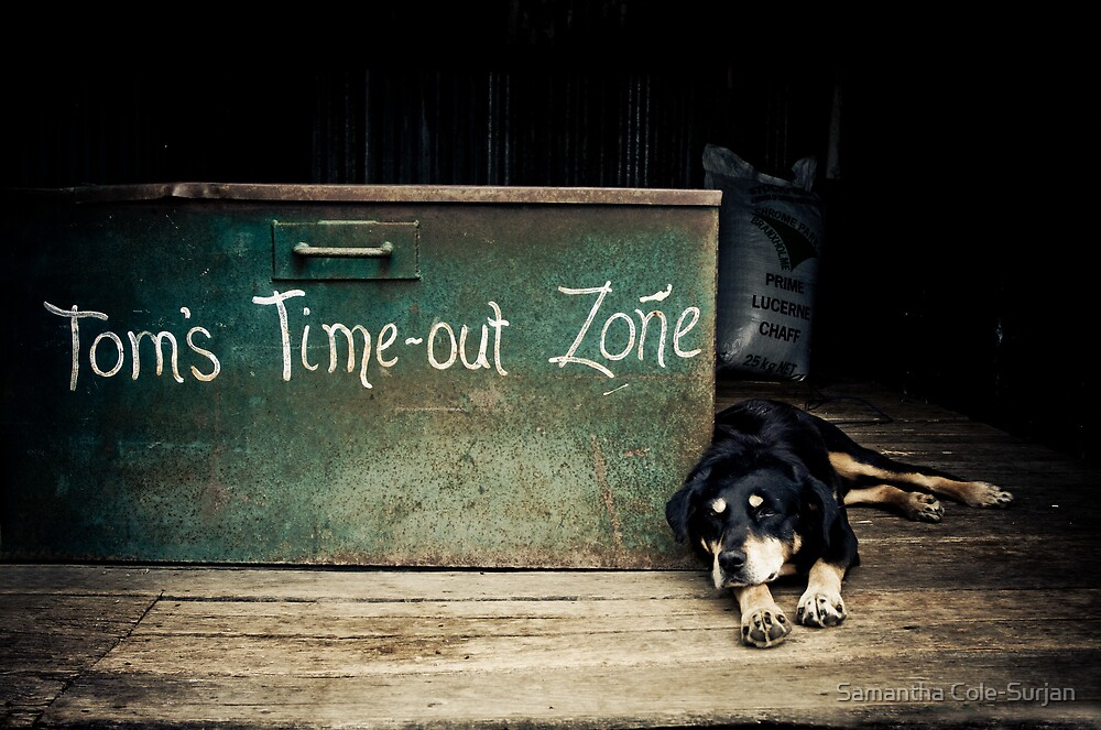 Tom's Time Out! by Samantha Cole-Surjan