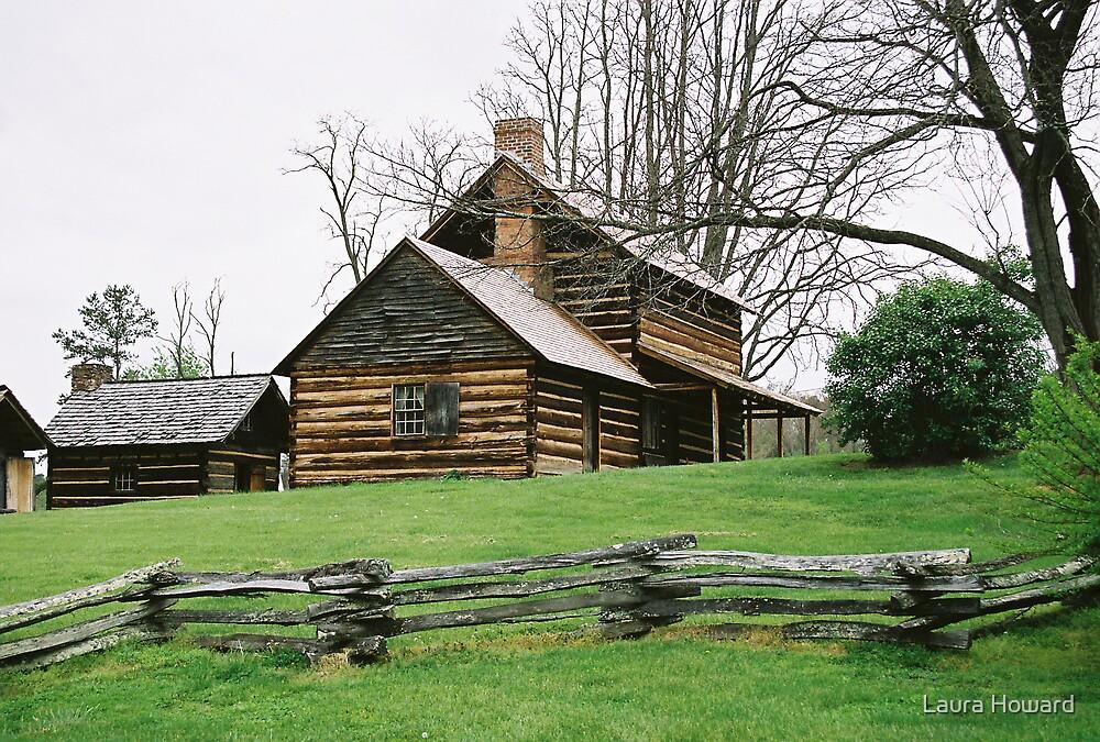 Vance's Birthplace - North Carolina by Laura Howard