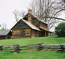 Vance's Birthplace - North Carolina by Laura Howard