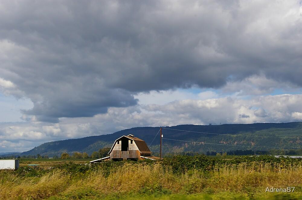 Oregon Barn by Adrena87