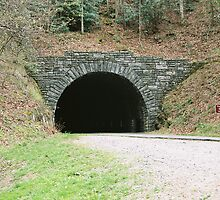 Tunnel - Blue Ridge Parkway by Laura Howard