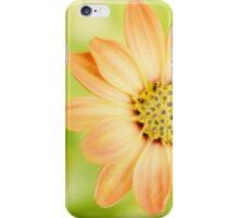 Sweet Little Orange Flower iPhone Case/Skin