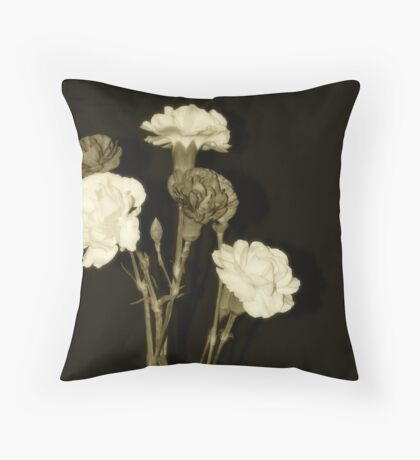 The beauty of no color Throw Pillow