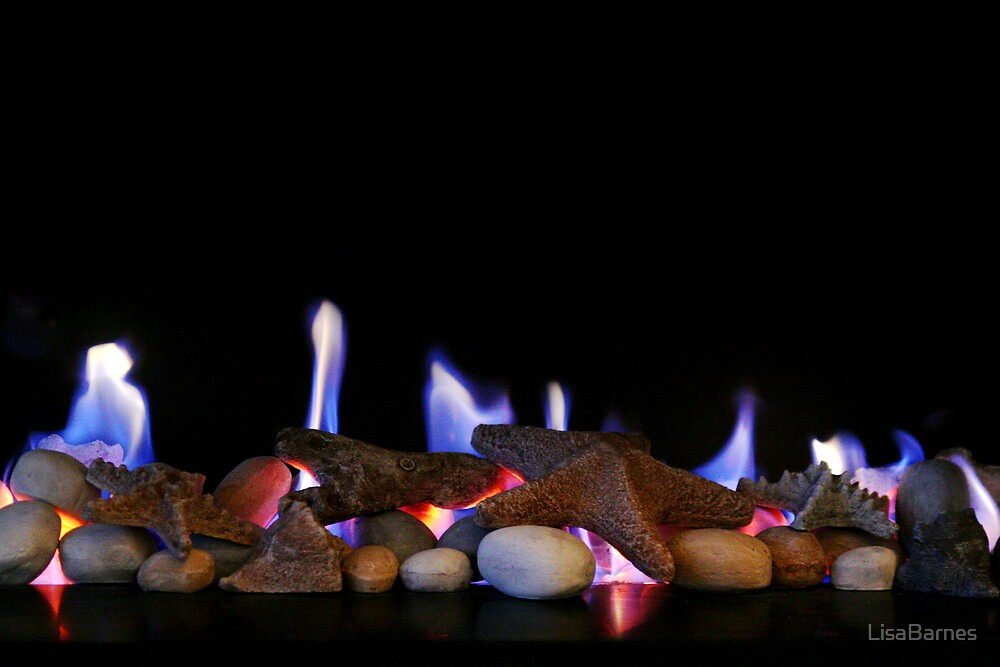 Open Fire by LisaBarnes