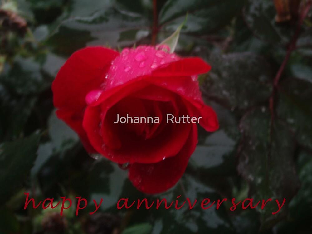 Happy Anniversary Rose by Johanna  Rutter