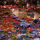 Leaf fest by MarianBendeth
