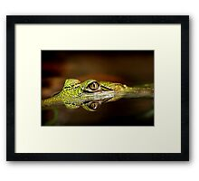 Gator Eyes Framed Print