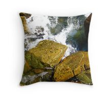 Hang on Tight Throw Pillow