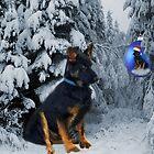 GERMAN SHEPHERD OUT IN SNOW PICTURE by ✿✿ Bonita ✿✿ ђєℓℓσ
