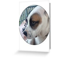Max The Dog Greeting Card