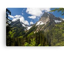 Towering Mountain Peaks in the Pacific Northwest Metal Print