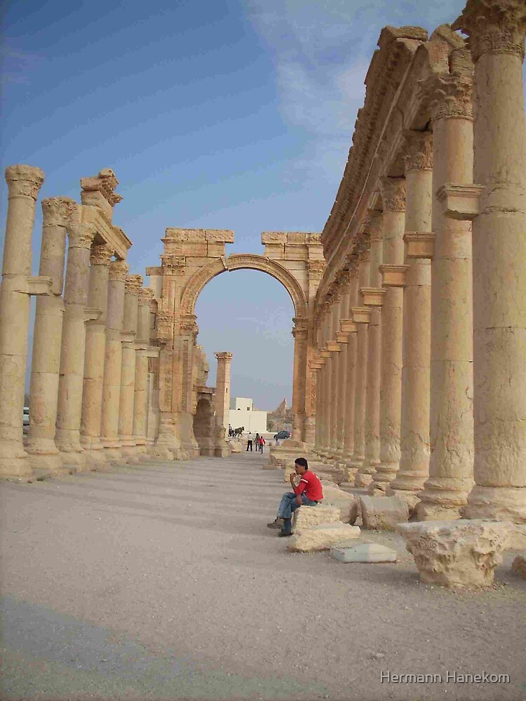 Roman columns lining the mainstreet - Roman ruins, Palmyra, Syria. by Hermann Hanekom