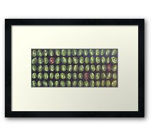 full of beans Framed Print