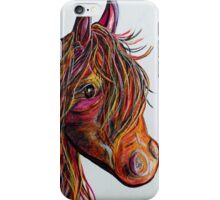 A Stick Horse Named Amber iPhone Case/Skin