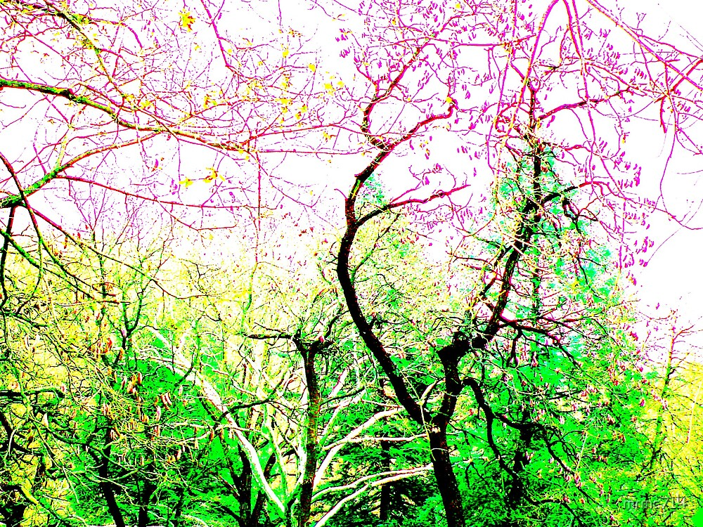 colored trees by mrmc714