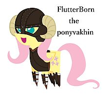 BBFFF Style Fluttershy, Skyrim version Photographic Print
