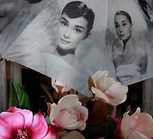 Sweet Magnolia's by Ian Ramsay