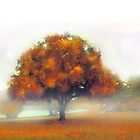 Tree and Mist by Robert  Anthony