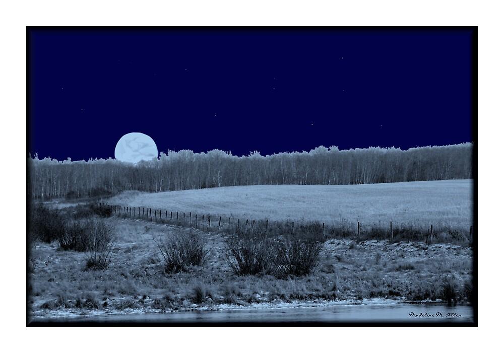 Moonlight by Madeline M  Allen