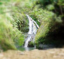 Roratonga falls by simonpeter